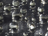 Water Drops on a Wax Surface Photographic Print by Jeff Daly