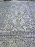 Mosaic, Volubilis Roman Ruins, Morocco Photographic Print by Gary Cook
