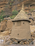 Traditional Dogon Granary, Mali Photographic Print by Gary Cook