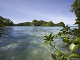 Bay in Rock Islands, Micronesia, Palau Photographic Print by Reinhard Dirscherl