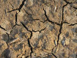 Dry, Cracked Soil Photographic Print by Jeff Daly