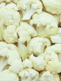 Pieces of Crunchy, Nutritious Cauliflower(Brassica Oleracea) Photographic Print by Wally Eberhart