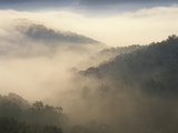 Fog-Filled Valley at Dawn, Red River Gorge Geological Area, Daniel Boone National Forest, Kentucky Photographic Print by Adam Jones