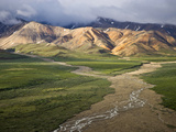 Braided River in Polychrome Pass, Denali National Park, Alaska, USA Photographic Print by Patrick Endres