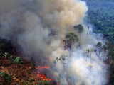 Aerial View of Rainforest Being Burned to Clear Land to Make Pasture for Cattle Ranching Photographic Print by Jacques Janqoux
