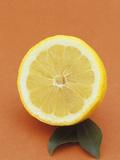 Sliced Lemon Fruit Photographic Print by Wally Eberhart