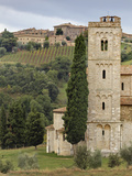 Vineyards, St. Antimo Abbey, Montalcino, Tuscany, Italy Photographic Print by Adam Jones