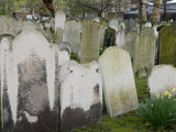 Limestone Headstones in a London Cemetery are Illegible after Centuries of Weathering Photographic Print by Michael Johnson