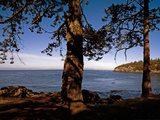 Looking Out over Haro Strait from Lime Kiln Point State Park, Washington, USA Photographic Print by Paul Andrew Lawrence