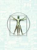 Illustration of Leonardo Da Vinci's Vitruvian Photographic Print by Victor Habbick