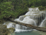 Seven Step Waterfall in the Monsoon Forest of Erawan National Park, Thailand Photographic Print by Thomas Marent