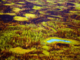 Early Fall after the Summers of the Nenana Forest Fire Photographic Print by Paul Andrew Lawrence