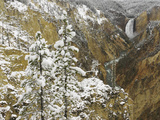 Lower Yellowstone Falls and the Grand Canyon of the Yellowstone after an Autumn Snowfall Photographic Print by Don Grall