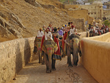 Tourists Riding Indian Elephants Up to Amber Fort, Jaipur, India Photographic Print by Adam Jones