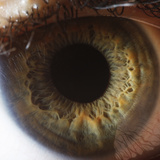 Close Up of Human Eye Photographic Print by Suren Manvelyan
