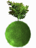 Illustration of a Beautiful Single Tree on Top of a Grass-Covered Sphere on a White Background Photographic Print by Victor Habbick