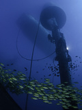 A Diver Works on Installing a Massive Wave Energy Buoy Off Kaneoho Bay, Oahu Photographic Print by David Fleetham