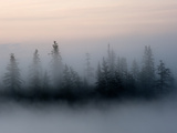 Radiation Fog Forms on Shuchi Lake in the Siberian Photographic Print by Chris Linder
