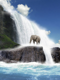 An African Elephant Standing on Rocks Beside a Big Beautiful Waterfall Against a Bright Blue Sky Photographic Print by Victor Habbick