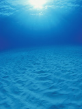 Underwater Sand Plain Lit by the Sun Through Clear Blue Water, Bahamas Fotoprint van Michael Johnson