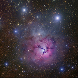 The Trifid Nebulin Sagittarius (M20, Barnard 85, NGC 6514) Photographic Print by Robert Gendler