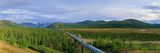 Trans Alaska Oil Pipeline Just South of the Brooks Range Photographic Print by Paul Andrew Lawrence