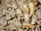 Ginger Aromatic Rhizomes for Use as a Spice or Herb (Zingiber Officinale) Valokuvavedos tekijn Ken Lucas