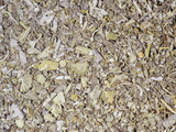 Dried Sage Leaves for Use as a Spice or Flavoring (Salvia Officinalis), Native To Southern Europe Photographic Print by Ken Lucas
