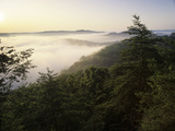Foggy Morning from Auxier Ridge, Red River Gorge Geological Area, Daniel Boone National Forest Photographic Print by Adam Jones