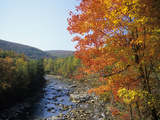 North Fork of the Potomac River, Potomac State Forest, Maryland Photographic Print by Adam Jones
