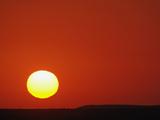 Sunset, Masai Mara Game Reserve, Kenya, Africa Photographic Print by Adam Jones