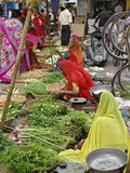 Colorful Fruit and Vegetable Market, Udaipur, India Photographic Print by Adam Jones