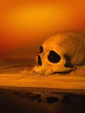 Illustration of a Human Skull Resting on Sand Photographic Print by Victor Habbick
