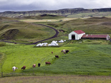 Rural Farm Scene, Iceland Photographic Print by Adam Jones
