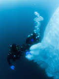 Antarctic Scuba Divers Swimming Near the Underwater Portion of an Iceberg Photographic Print by Louise Murray