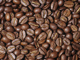Guatemalan (Variety Bourbon) Coffee Dried Beans (Coffea Arabica) Photographic Print by Ken Lucas