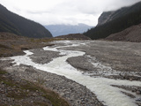 Braided River Channel and Glacial Outwash, Banff National Park, Alberta, Canada Photographic Print by Marli Miller