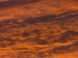Red Altostratus Clouds at Sunset Photographic Print by Michael Johnson