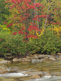 Swift River in Autumn, White Mountain National Forest, New Hampshire Photographic Print by Adam Jones