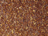 Red Rooibos Tea (Aspalathus Linearis), Grown in South Africa Photographic Print by Ken Lucas