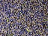 Dried Lavender Flowers (Lavandula Angustifolia), Native To The Mediterranean Region Photographic Print by Ken Lucas
