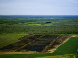 Breaking New Ground and Farming New Land Just North of Nenana, Alaska Photographic Print by Paul Andrew Lawrence