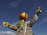 Low Angle View of Scarecrow Near Concord, Massachusetts Photographic Print by Adam Jones