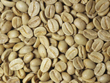 Bolivian Green Coffee Beans Unroasted Photographic Print by Ken Lucas