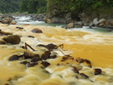 Rio Sucio Converges with the Rio Honduras, Silt-Laden Water Merging with Clear Water Photographic Print by Thomas Marent