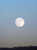 Full Moon Photographic Print by Louise Murray