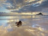 Koki Beach Near Hana, Maui, Hawaii, USA with Alau Island in the Distance Photographic Print by Patrick Smith