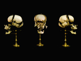 Front and Side Views of Human Skulls with the Bones Separated Photographic Print by Viktor Sykora
