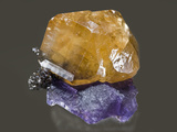 Calcite on Fluorite with Sphalerite, Denton Mine Photographic Print by Mark Schneider