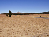 Pumice Desert Formed When Mt. Mazama Erupted 7700 Years Ago Photographic Print by Robert & Jean Pollock